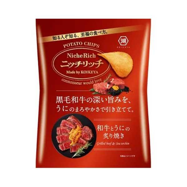 Chips - Boeuf Grillé & Oursin de Mer | Oishi Market